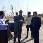 اشتغالزایی ۱۰۰۰ نفری با بهره برداری کامل از سه شهرک گلخانه ای استان البرز